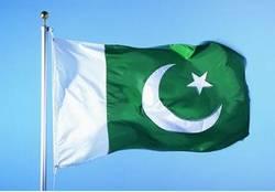 巴基斯坦国旗.jpg